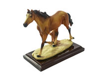 Horse runs. Royalty Free Stock Images