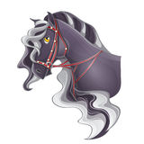 Horse's head with a bridle. Picture of a horse's head with a bridle Stock Photos