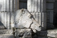 The horse`s head carved out of limestone stone on the background of columns of the same material royalty free stock image