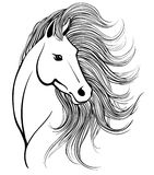 Horse`s head with mane Stock Image