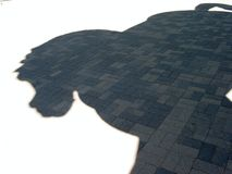 horse s shadow Στοκ εικόνα με δικαίωμα ελεύθερης χρήσης