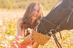 the horse& x27;s stallion. beautiful girl with stock photo