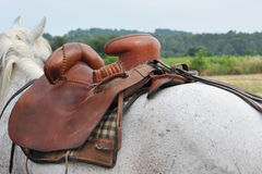 Horse saddle Stock Images