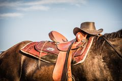 Horse and Saddle with Cowboy Hat. Back of Brown Horse wearing a Saddle and Cowboy Hat Stock Photos