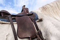 Horse saddle,leather,blanket Royalty Free Stock Images