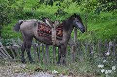 Horse with saddle. Horse and saddle made from carpets and  a pillow Stock Photography