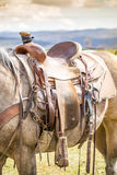 Horse saddle on the ranch Stock Photography