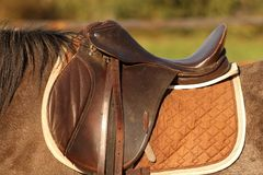 Horse saddle. Traditional saddle mounted on a  brown mare Royalty Free Stock Image