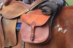 Horse saddled up with oiled rain slicker behind saddle Stock Image
