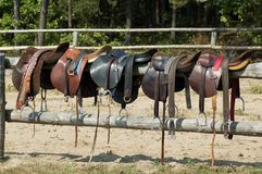 Horse saddles. For riding and polo on fence Royalty Free Stock Image