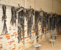 Horse saddles. Many old black riding saddles hanging in a stable stock photos