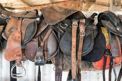 Horse saddles in stable. Western style horse saddles inside barn or stable on farm on sunny day royalty free stock photography