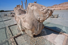 Horse sculpture from column of broken palace in Persepolis Stock Photos
