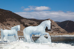 Horse, a sculpture from ice Stock Images