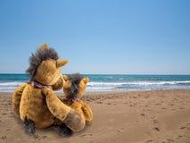 Horse seaside holidays Stock Photo