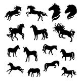Horse set vector. Horse big set of black silhouettes. Icons and illustrations of animals. Wild animals pattern Stock Photography