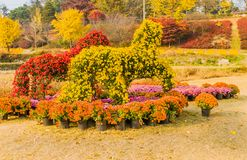 Horse shaped bushes covered with red and yellow flowers Royalty Free Stock Image