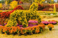 Horse shaped bushes covered with red and yellow flowers Stock Image