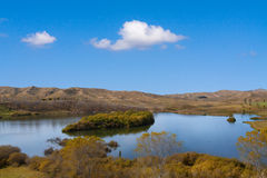 Horse Shoe Lake,  New Zealand Royalty Free Stock Photos