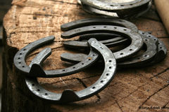 Horse shoes Stock Photo