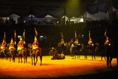 Horse show Stock Photography