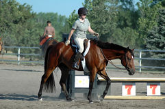 Horse show. Woman rider giving her horse a pat an the back for winning an event Royalty Free Stock Photography