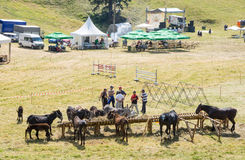 Horse Show at the Folklore Festival of Rozhen in the Rhodopes Stock Photo
