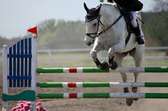 Horse show jumping Royalty Free Stock Images