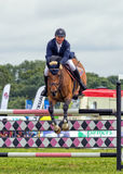 Horse Show Jumping at the Hanbury Countryside Show, England. An image taken head-on of a beautiful horse ridden by a male competitor jumping over hurdles during Royalty Free Stock Photography