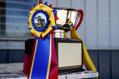 Horse Show Ribbon and Trophy Stock Photography
