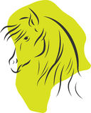Horse silhouette. Outline vector horse head silhouette with abstract green shape on background Stock Image