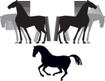 Horse silhouette Royalty Free Stock Photo