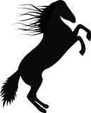 Horse silhouette Royalty Free Stock Photos