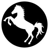 Horse silhouette in black circle Stock Photo