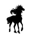 Horse. Silhouette horse ,  really hairy, at its mane and tail, is shown on white background Stock Image