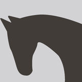 Horse silhouette icon Royalty Free Stock Photo