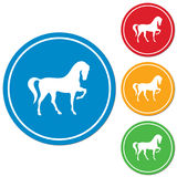 Horse silhouette icon Stock Images