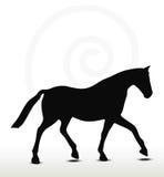 Horse silhouette Royalty Free Stock Photos