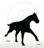 Horse silhouette in running position Stock Photo