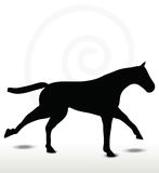 Horse silhouette in running position Stock Image