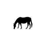 Horse silhouette Stock Photo
