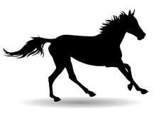 Horse,silhouette on a white background. A horse gallops fast,  illustration silhouette on a white background Royalty Free Stock Photo
