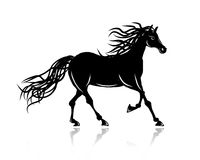Horse silhouette for your design Royalty Free Stock Image