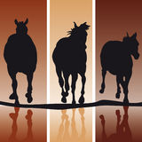 Horse Silhouettes Royalty Free Stock Photography
