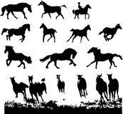 Horse silhouettes set. Horse silhouettes animal illustration set Stock Images