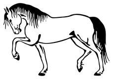 Horse sketch. A horse walks jauntily. Vector sketch Stock Illustration