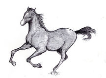 Horse sketch 2 Royalty Free Stock Photography