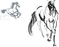 Horse sketch Royalty Free Stock Photography