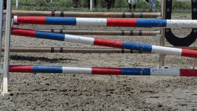 Horse skips obstacles stock footage