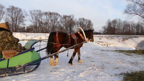 Horse sleigh sunny winter day stock video footage